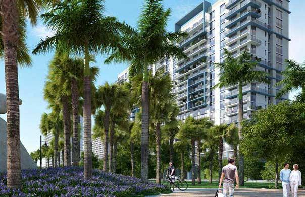 Preventa 5350 Park Florida Contacto Rosangela Mendoza